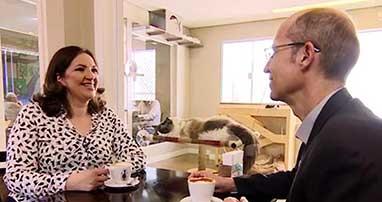 cafe-com-gato-pequenas-empresas-e-grandes-negocios