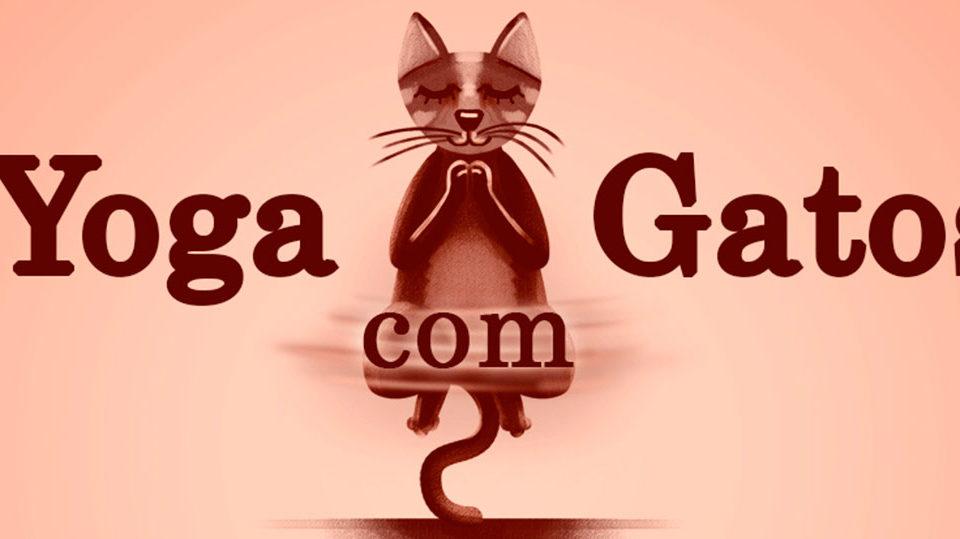 yoga-com-gatos-sorocaba